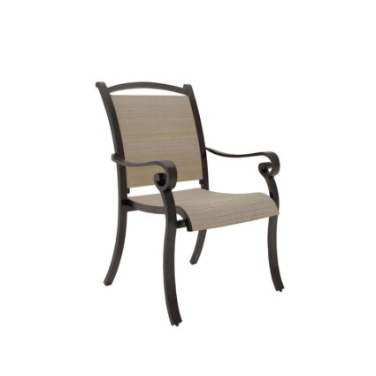 Bass Lake - Beige/Brown - Sling Chair
